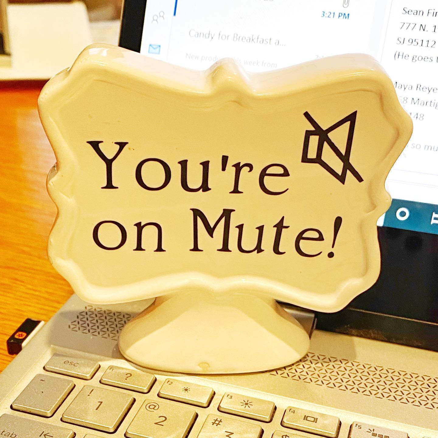 mute-you-are-on-mute